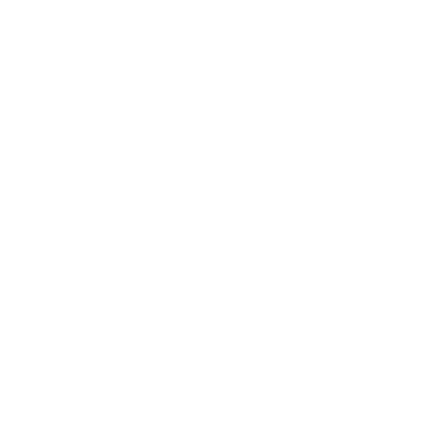 The Fellow